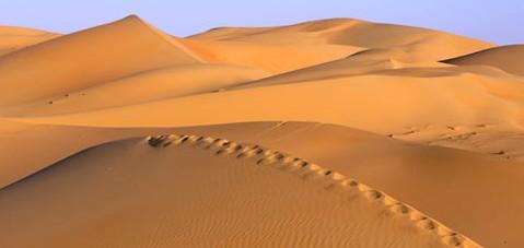 traces_pas_desert
