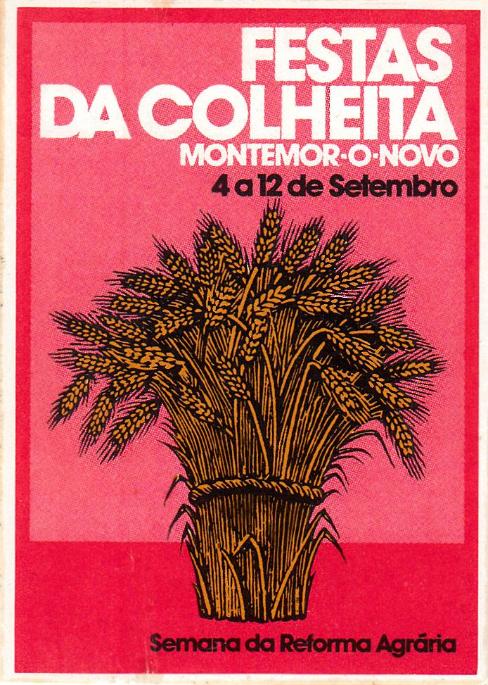 Festa Colheitas Montemor_0001