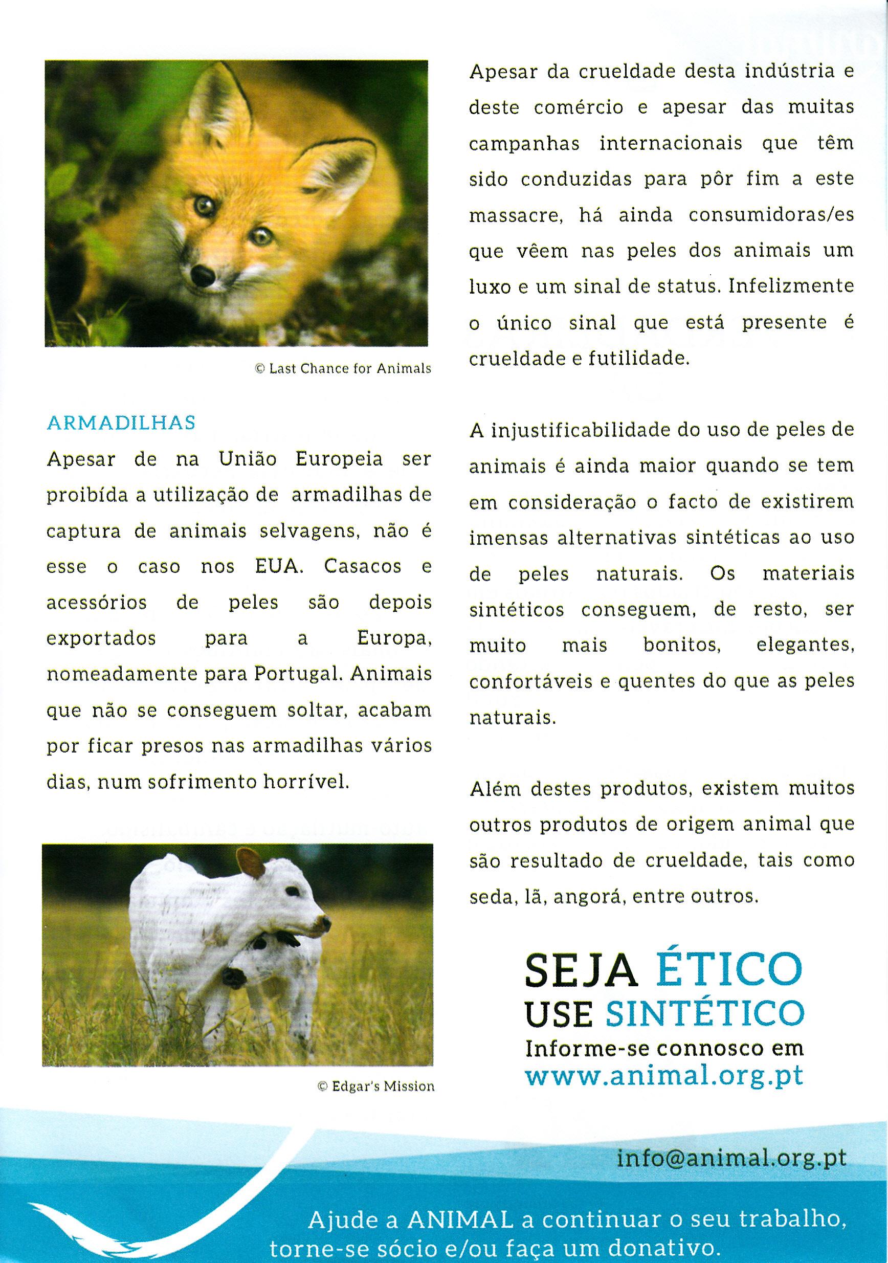 Animal_0008