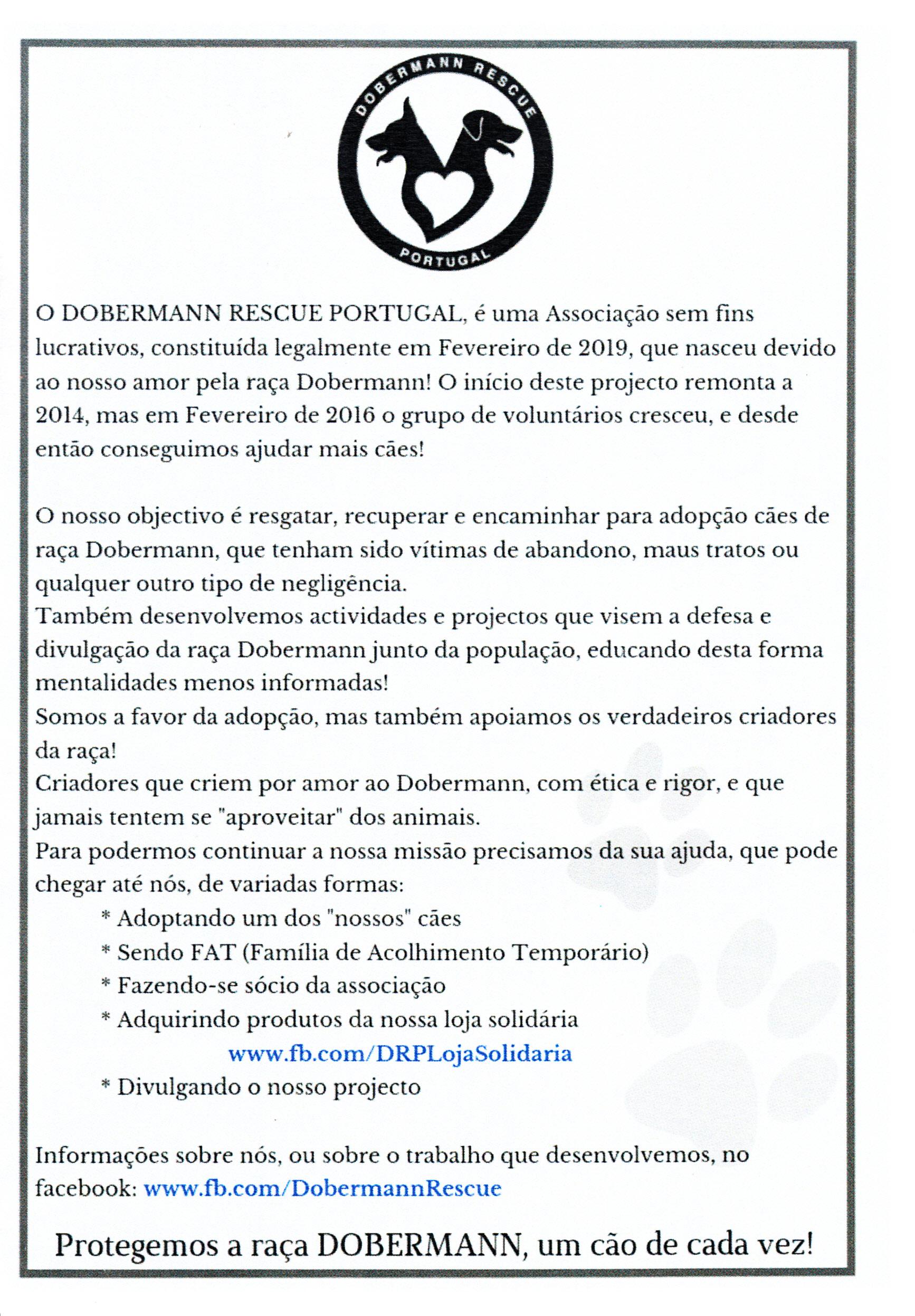 Doberman_2019