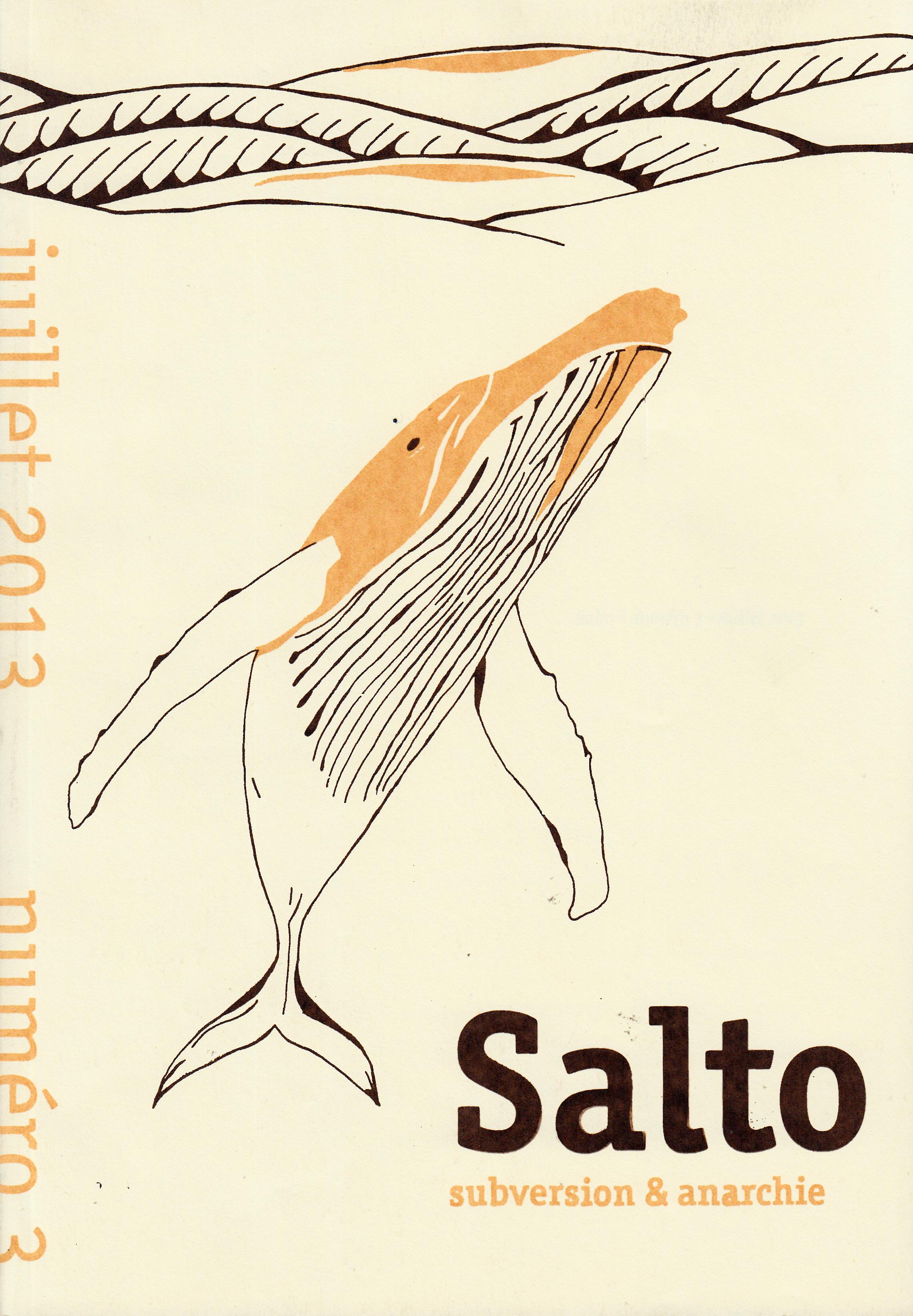 Salto_0002
