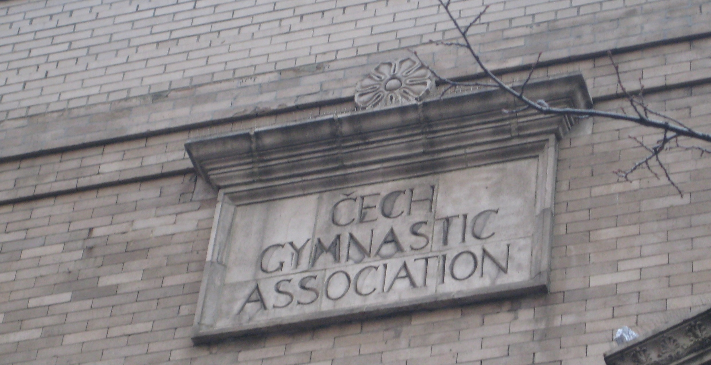 czechgymnasticassociation2