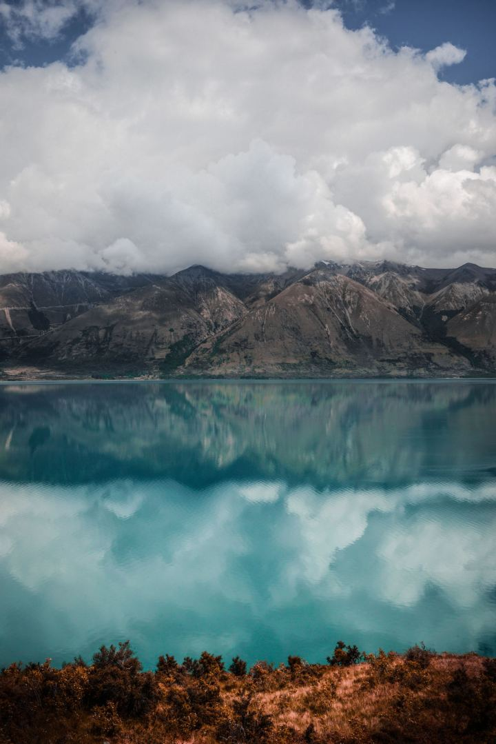 lago natural nueva zelanda agua celeste turqueza verde paisaje