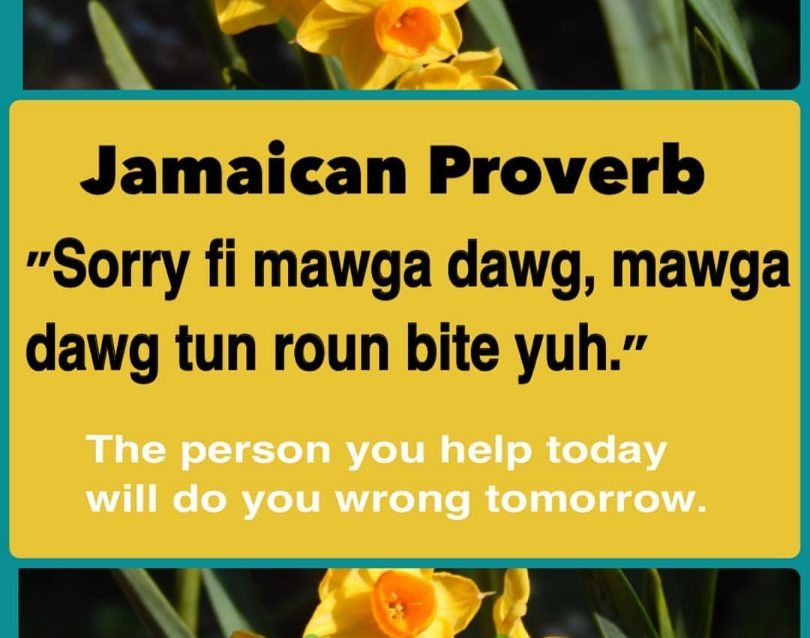 12 Jamaican Proverbs and Their Meanings
