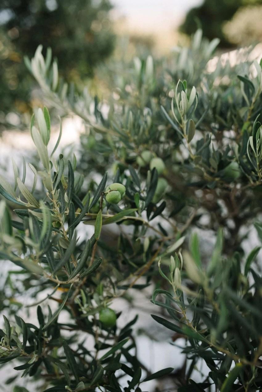 Santorini Engagement Photographer_0002.jpg