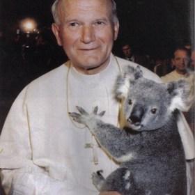 australia1986ci1