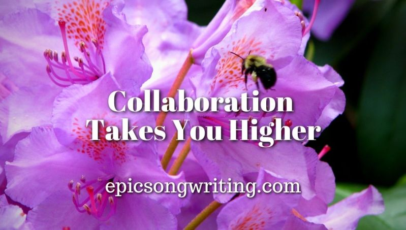 Collaboration Takes Your Higher