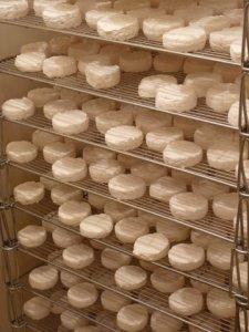 artisinal cheeses