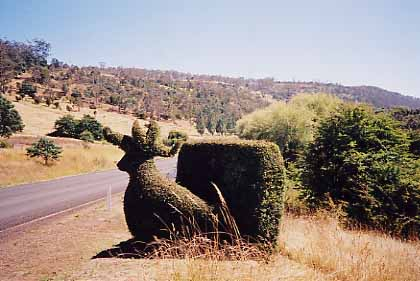 roadside topiary
