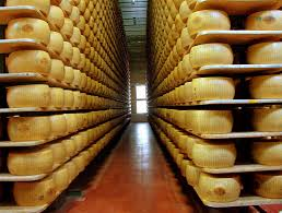 parmigiano wheels in storage while aging