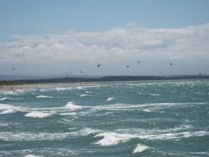 Kite surfers at Tahunanui Beach near Nelson.