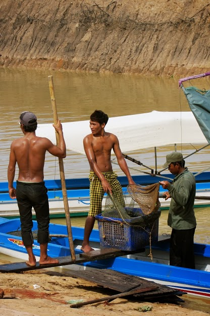 The Lake provides over half the fish consumed in Cambodia