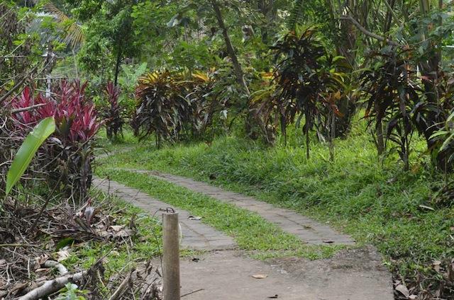 Spice garden paths