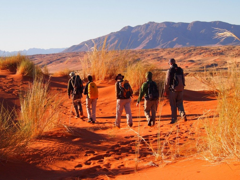 NAMIB DESERT TRAIL WALKERS - ©GRETCHEN HEALEY