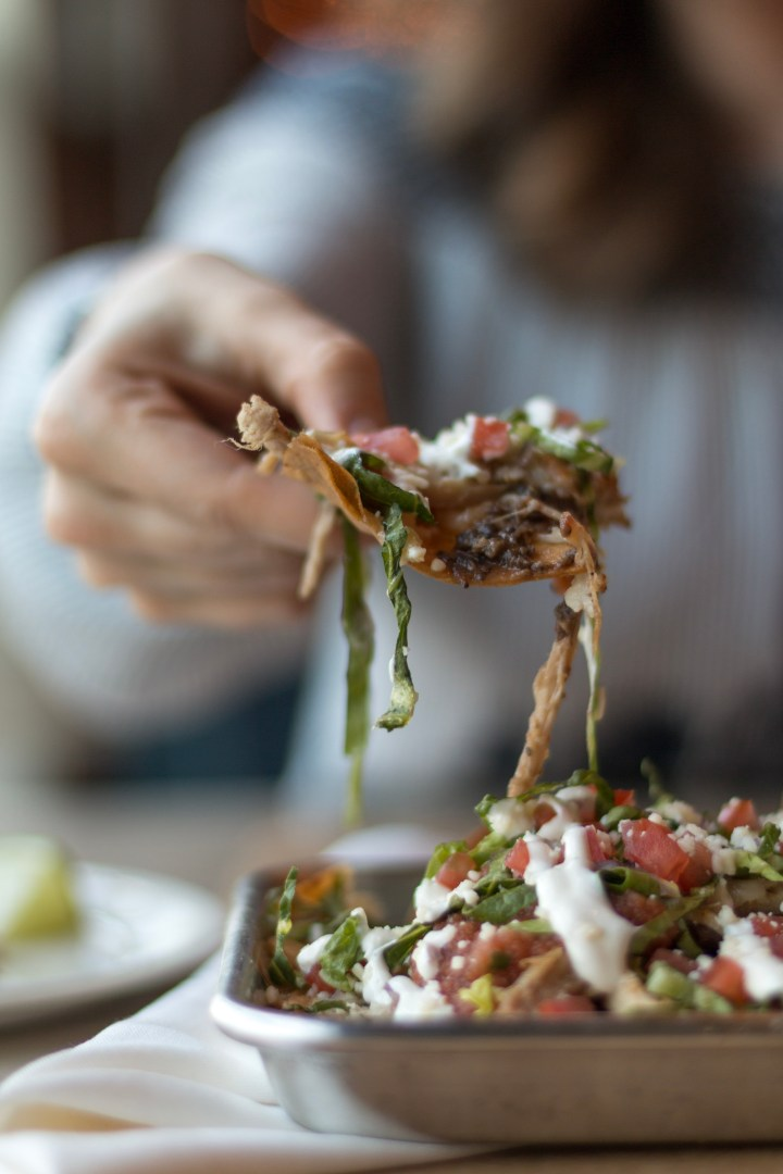 El Coyote [Savannah's Newest Authentic Mexican Joint]
