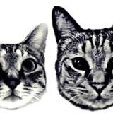泣きむし先生が、好きなことを見つけて起業するまで。猫好きさん必見☆
