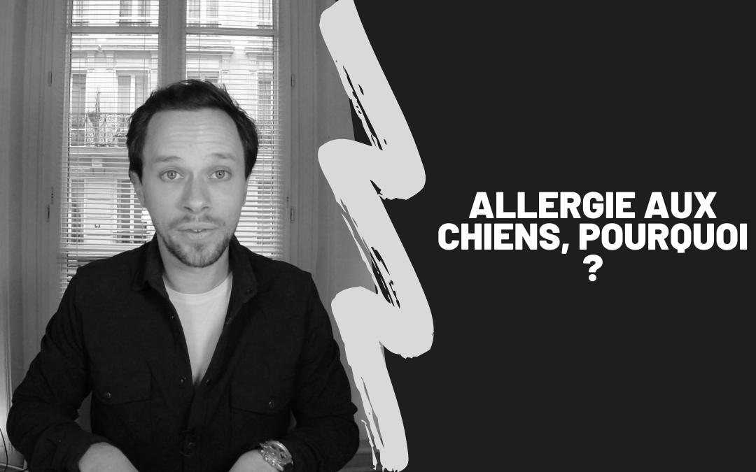 Allergie Aux Chiens, Pourquoi ?