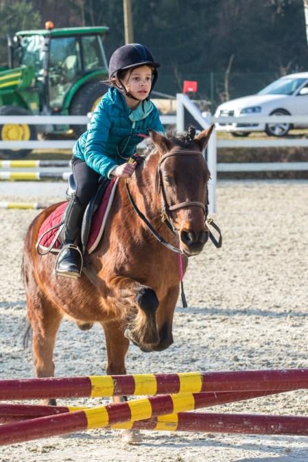 concours-equitation-saut-obstacles-equ-crin-olima-chantraine (9)