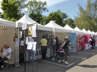 forum-des-associations-epinal (14)