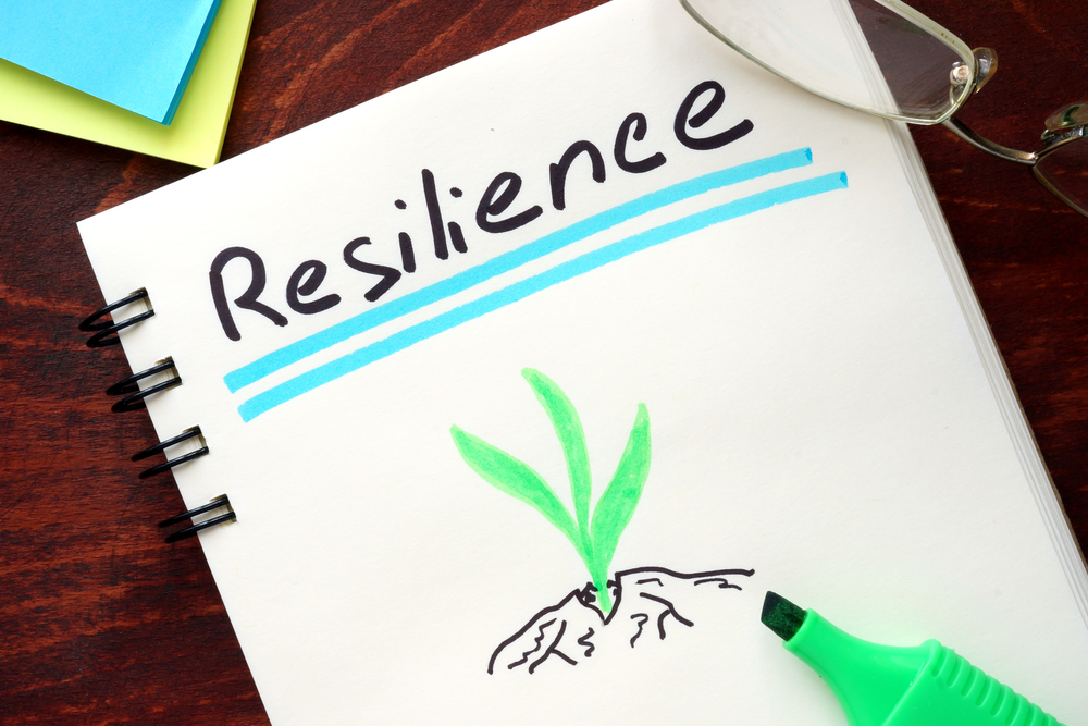 Imagining Resilience
