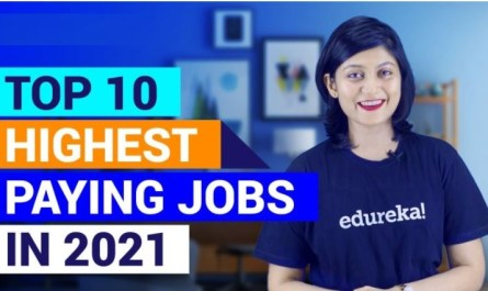 Highest Paying Tech Jobs in The World