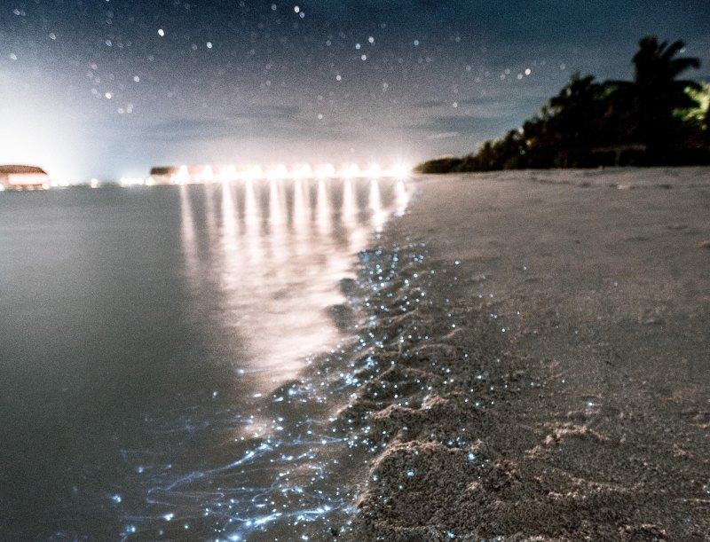 Kambodscha Koh Rongleuchtendes Plankton kevin-wolf-ItQBfuJGrOk-unsplash