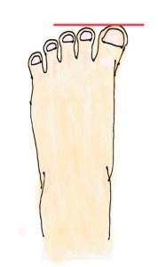 親指が一番長いことを示す手書き画像