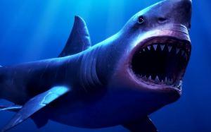 Černý démon:  Obývá vody u Kalifornie bájný predátor?