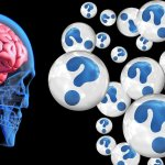 Magnetické nanočástice v mozku: možná souvislost s Alzheimerovou chorobou