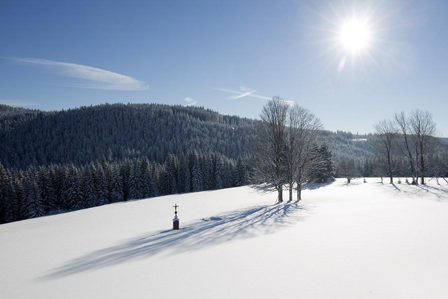 Zimní procházky Šumavou