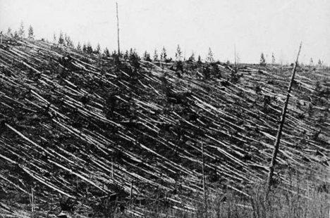 04 - Podle některých bláznivějších teorií stojí za výbuchem v Podkamenné Tunguzce Nikola Tesla.