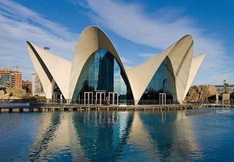 1200px-L'Oceanografic,_Valencia,_Spain_1_-_Jan_07_640