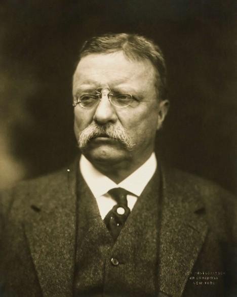Americký prezident Theodor Roosevelt propůjčí medvídkovi svoje křestní jméno.