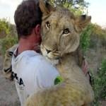 VIDEO: Takhle objímají zvířata!
