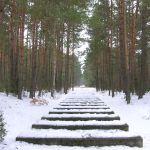 Treblinka: 870 000 duší v krematoriích