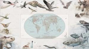 Jací jsou největší zvířecí cestovatelé?