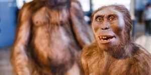 Afrika vydala nové pozůstatky Homo erectus