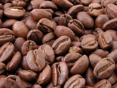 Káva proniká do Evropy až na sklonku 17. století.