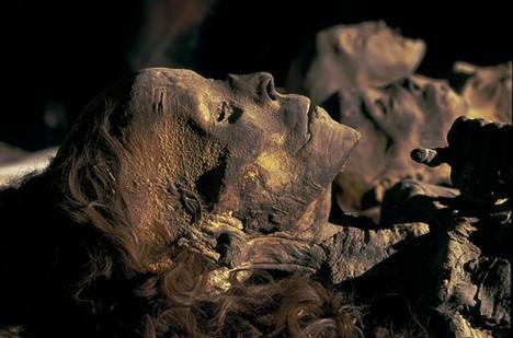 Egypt. Archaeology Nefertiti