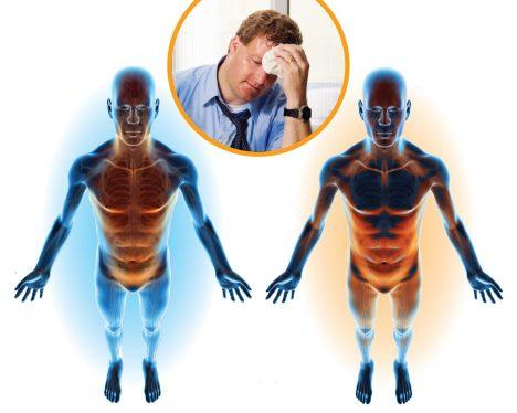 Pro naše tělo je velmi důležité rozeznávat teplo a chlad. Naše orgány musí tělo uchovávat ve správné teplotě, aby dobře fungovaly a upozorňovat na extrémy, které by je mohly poškodit. Vnější teplotu detekujeme pomocí zakončení nervů v kůži, tu vnitřní hlídá část mozku zvaná hypotalamus. Při přehřátí například náš mozek vydá pokyn vytvářet pot, při chladu vyvolá třes.