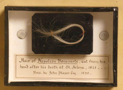Napoleonovy vlasy