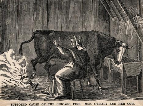 Příběh o nešťastné krávě paní O'Leary měl zřejmě vyvolat nenávist vůči irské menšině.