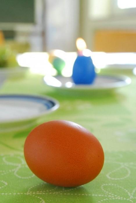 Proměna obyčejného vejce ve zlaté se stane odměnou pro chudé lidi.