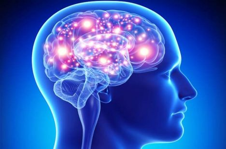 Přeprogramovat lidský mozek? Možná už brzy realita.
