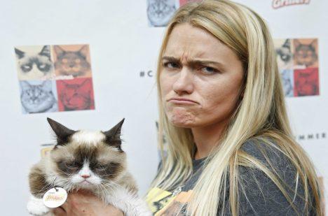 Své majitelce vydělala Grumpy Cat desítky milionů dolarů.