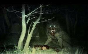 Skuteční vlkodlaci: Šlo o šílence, nebo vyznavače tajného kultu?