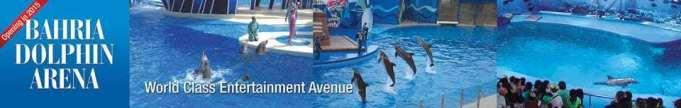 Bahria Dolphin Arena Karachi