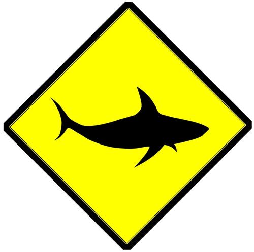 EU ban on shark finning
