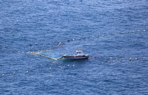 Small-scale fisheries