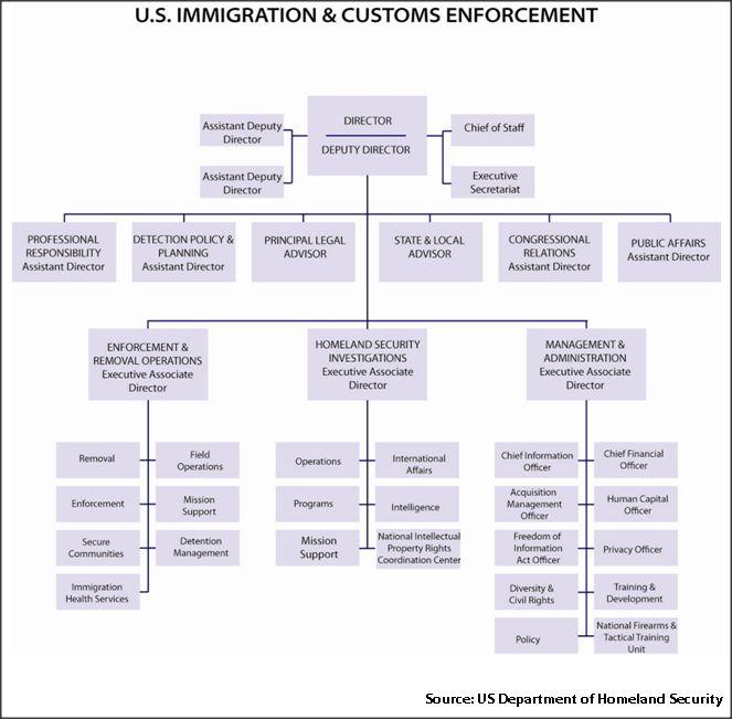 U.S. Immigration & Customs Enforcement